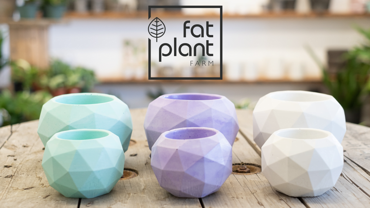 Ep. 67 with Kait Waugh from Fat Plant Farm